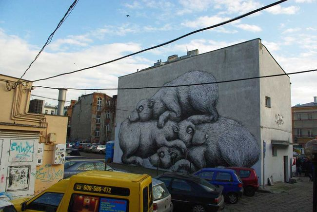 Street Art By Roa - Warsaw (Poland)